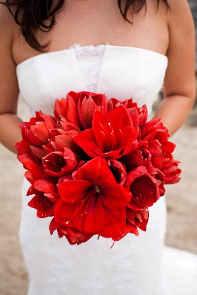 Flores para ramo de novia post ii g p judith jorda for Amaryllis en bouquet