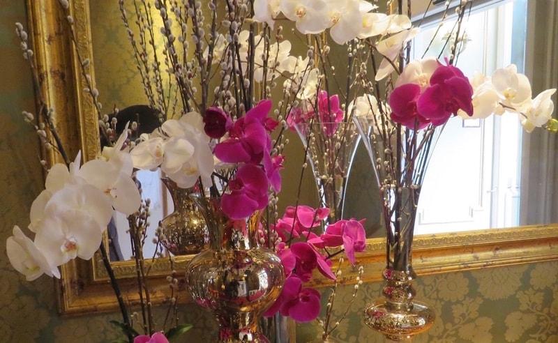 Reposición flores Hoteles