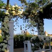 Weddings and Events Decoration in Girona