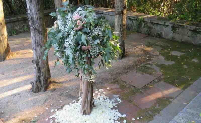 Decoración con árboles
