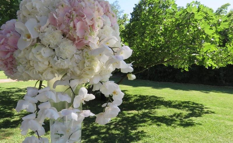 Hortensias para bodas