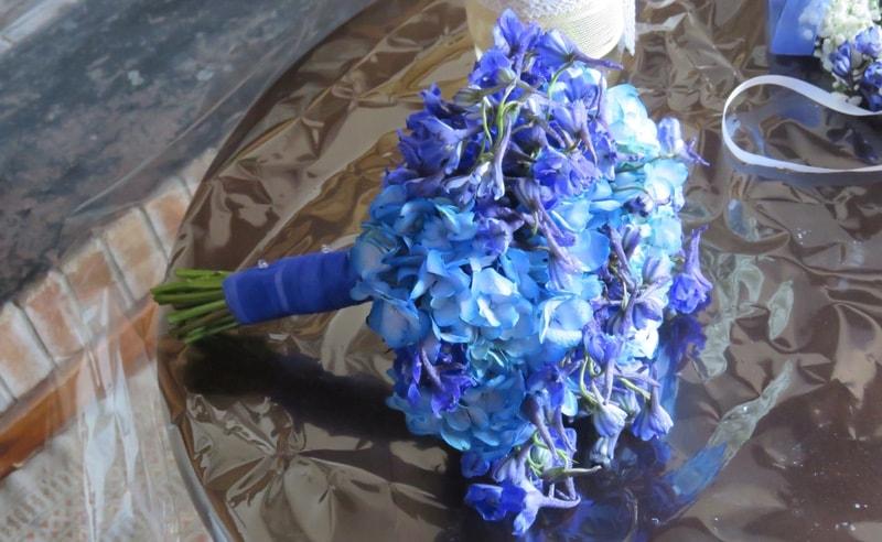 Hortensia boda