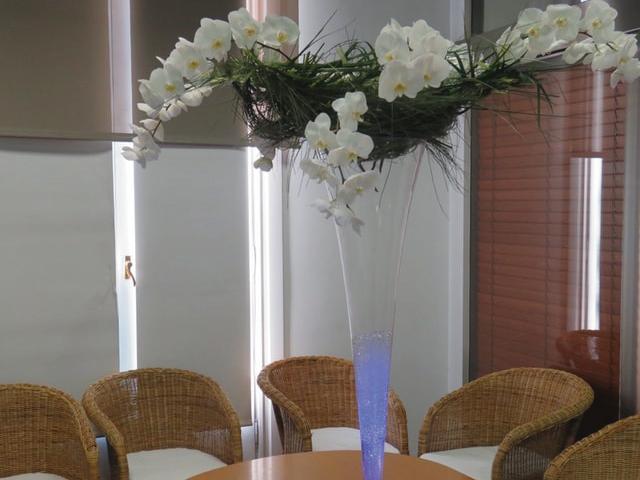 reposicion flores hoteles