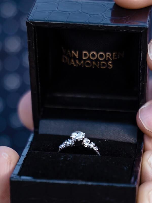 Wedding proposal Service